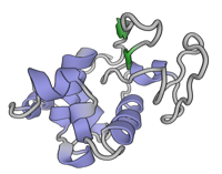visualize pdb 3J6K