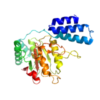 visualize pdb 4YPN