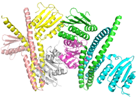 visualize pdb 5IUK