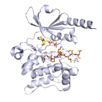 visualize pdb 4FIF