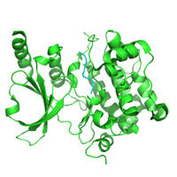 visualize pdb 4FII