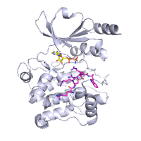 visualize pdb 4JDI