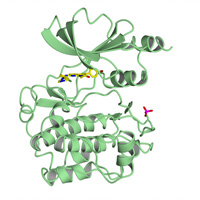 visualize pdb 5VEE