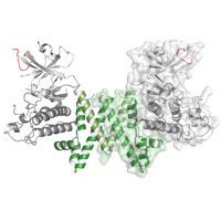 visualize pdb 6BHC