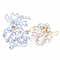 visualize pdb 5UPK