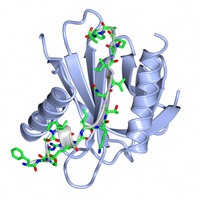 visualize pdb 4JIF