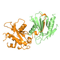 visualize pdb 4DX8