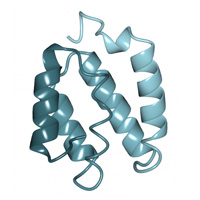 visualize pdb 4FQN