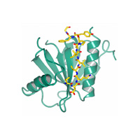 visualize pdb 4WJ7