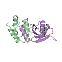 visualize pdb 4Y5O