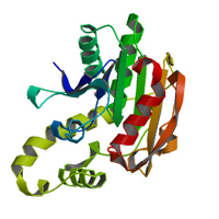 visualize pdb 6BA8